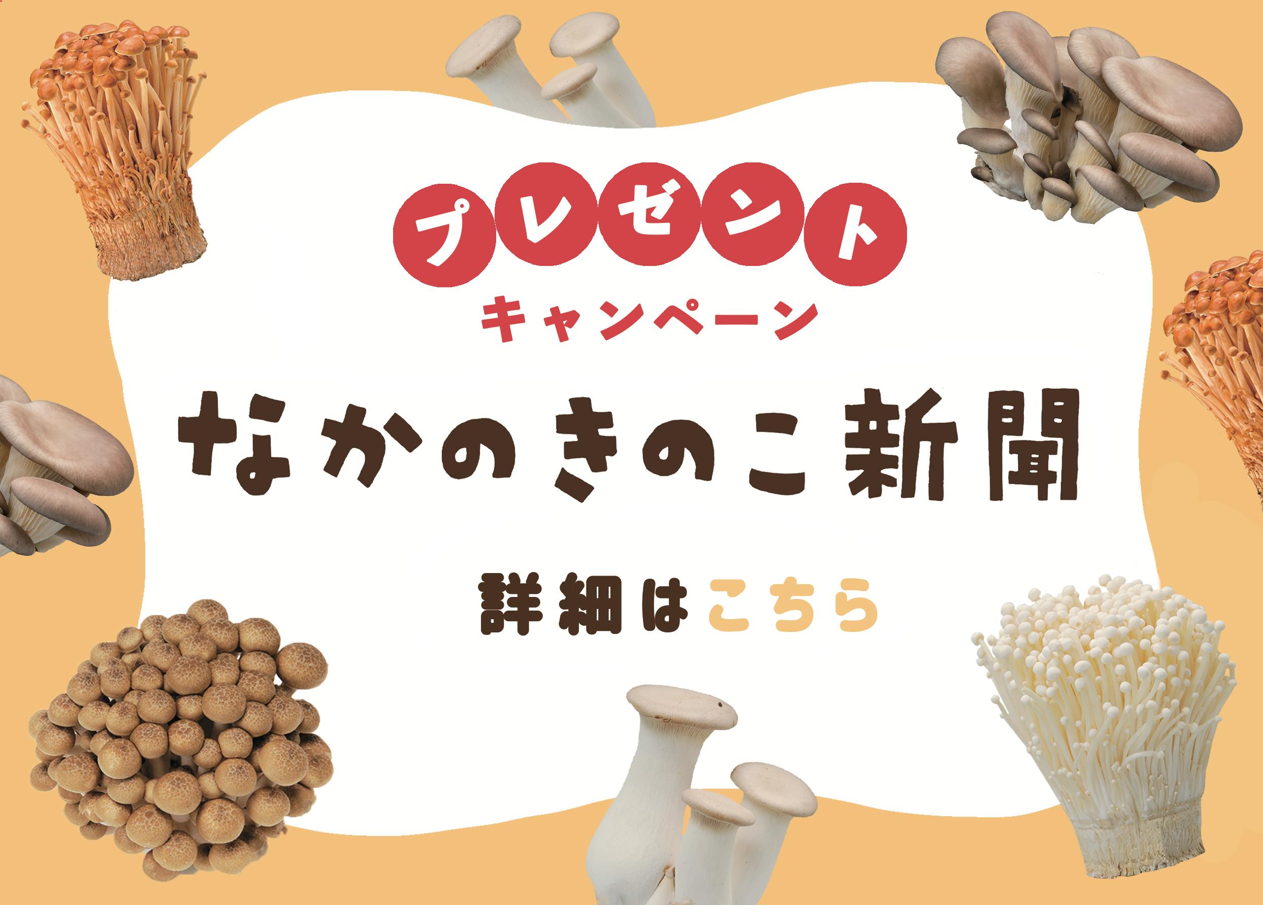 【秋冬号プレゼントキャンペーン】中野市産「きのこの詰め合わせ」を10名様にプレゼント!